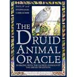 Druid Animal Oracle deck by Carr-Gomm & Carr-Gomm