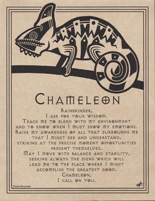 Chameleon Prayer poster