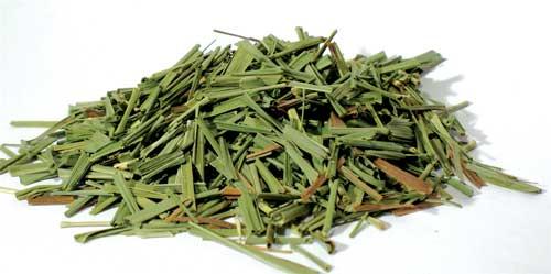 Lemongrass cut 1oz (Cymbopogon citratus) - Azuregreen