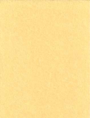 Light Parchment 5 Pack (8 1/2