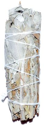 California White Sage smudge stick 3-4 inches